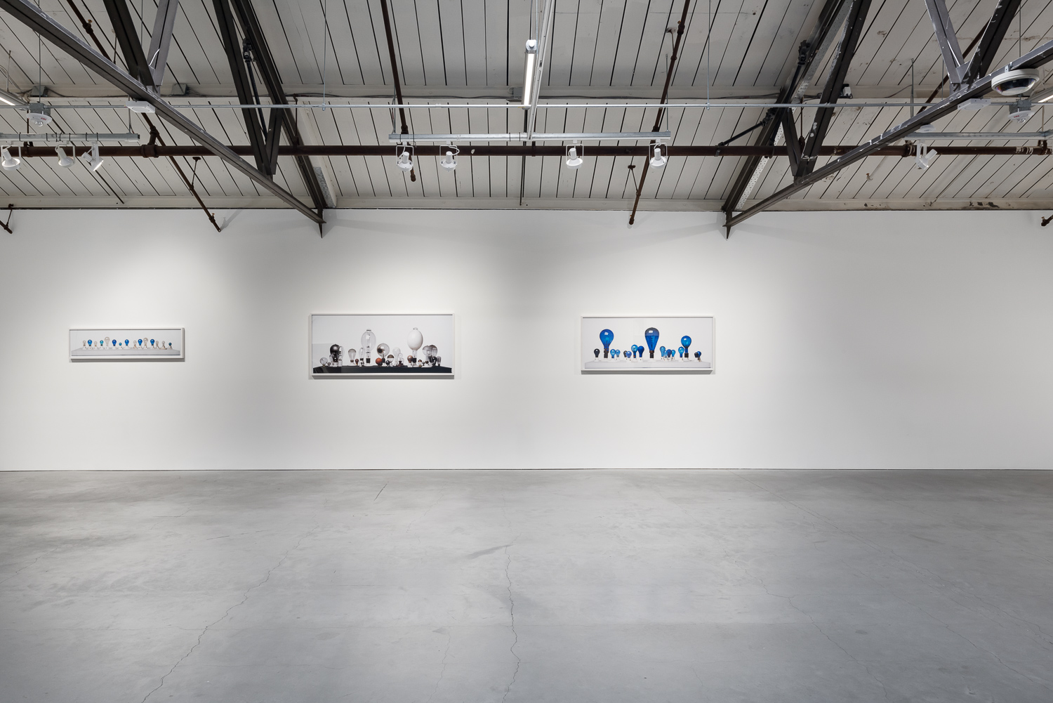 Installation View, Catherine Wagner, A Narrative History of the Light Bulb, 2006. Image courtesy of Anglim Gilbert and the artist.photography: Phillip Maisel