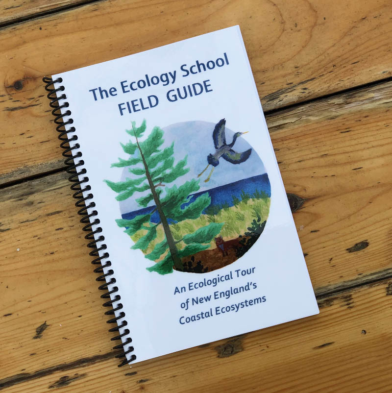 The Ecology School Field Guide: An Ecological Tour Of New England's Coastal Ecosystems ·$12 - Increase your knowledge of New England's coastal ecosystems with this handy, fun and easy-to-use field guide. This unique 120-page guide is organized by ecosystem and includes the most common species found in each.