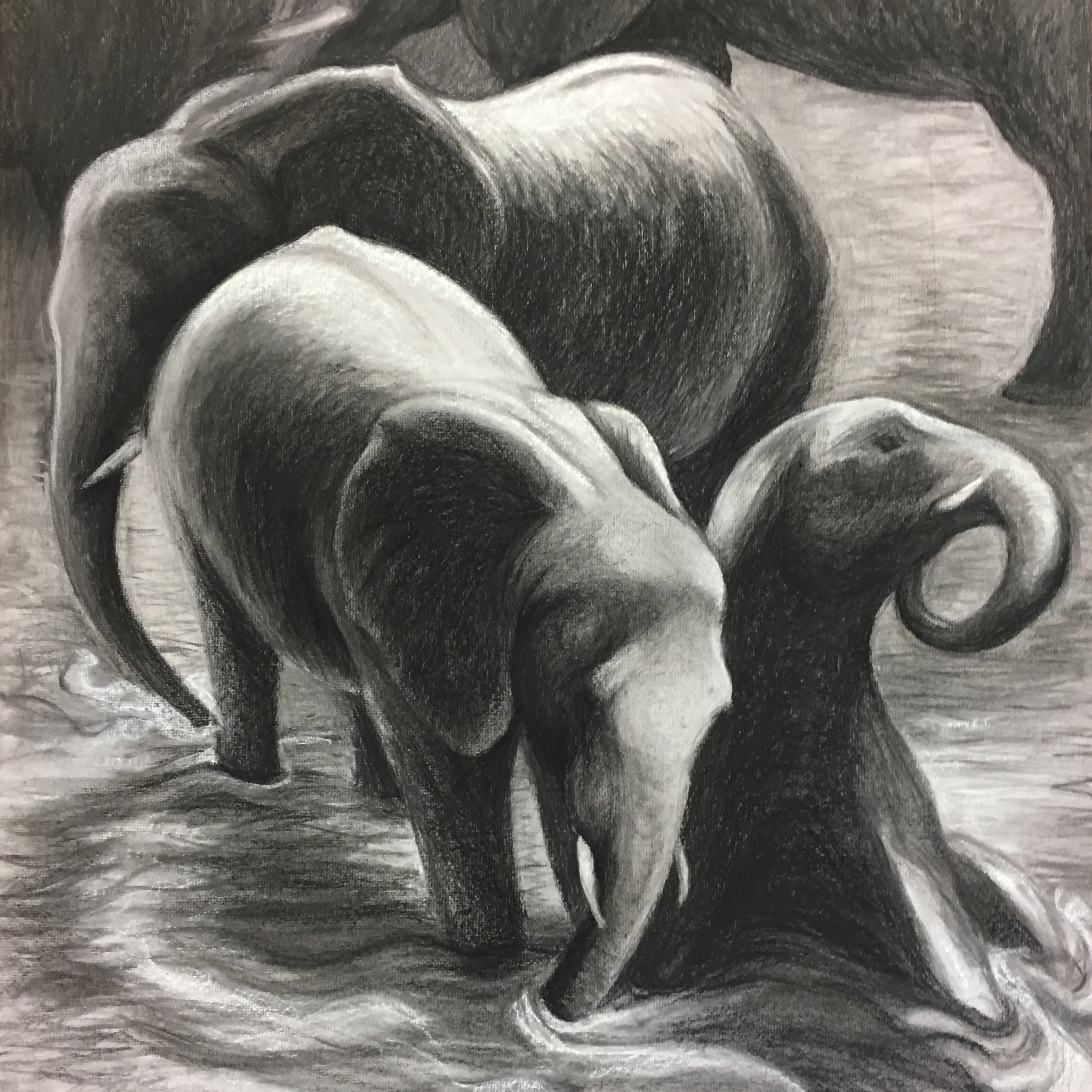 Midnight Dip, 2018. Charcoal & chalk on paper. 22 x 29''