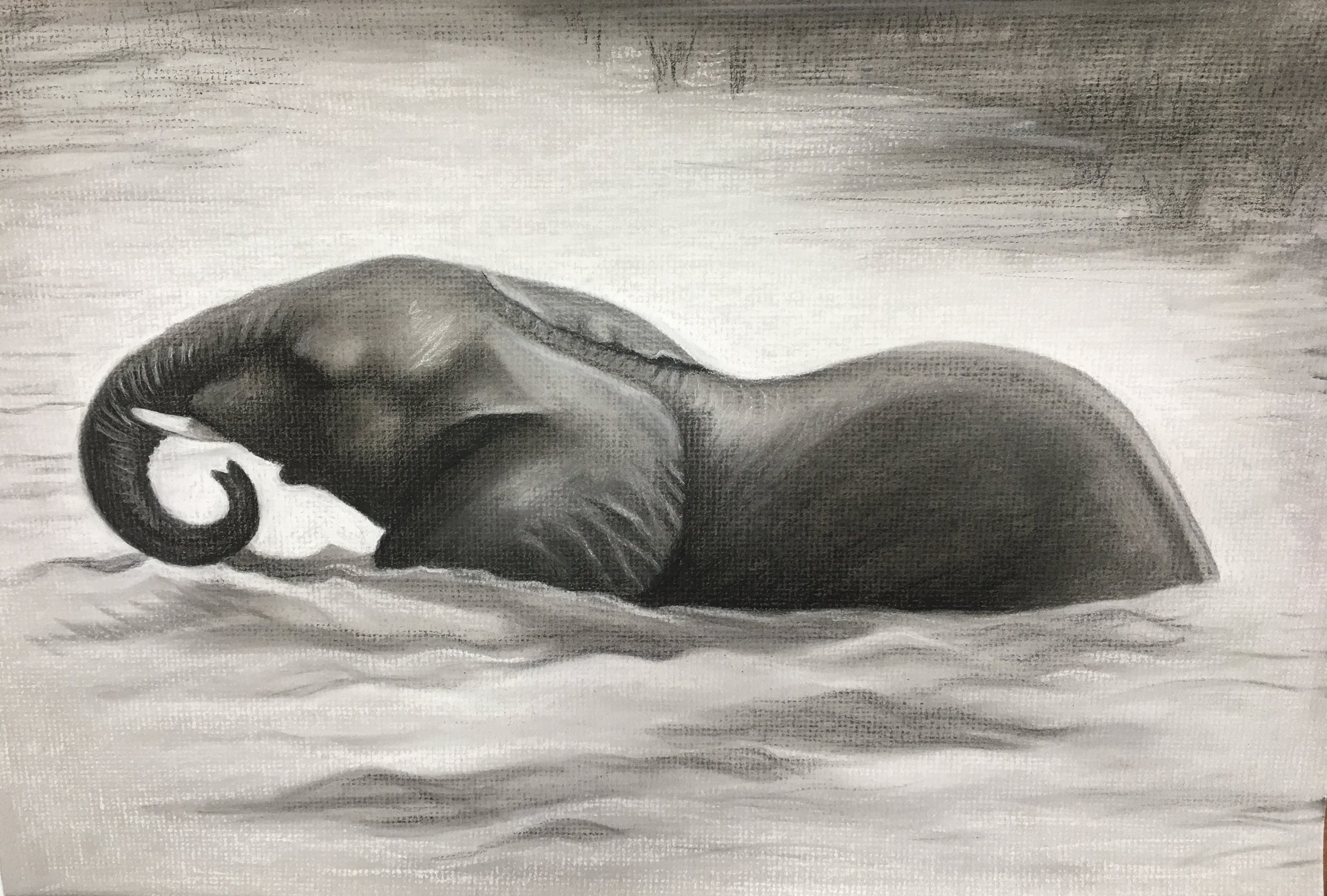 Cooling Off #2, 2017. Charcoal & chalk on paper. 12x18""