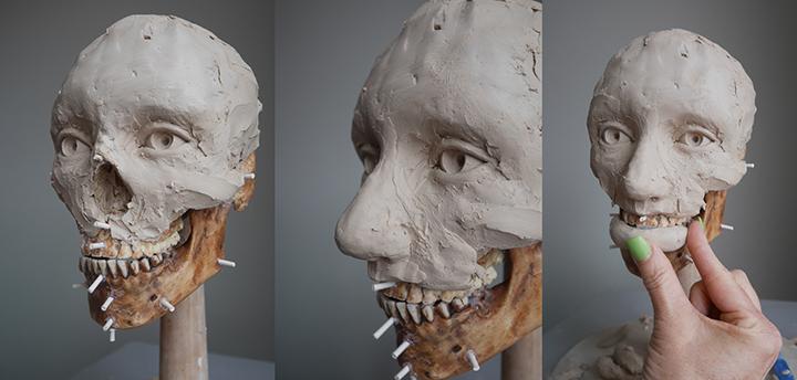 Facial+Approximation_3.jpg