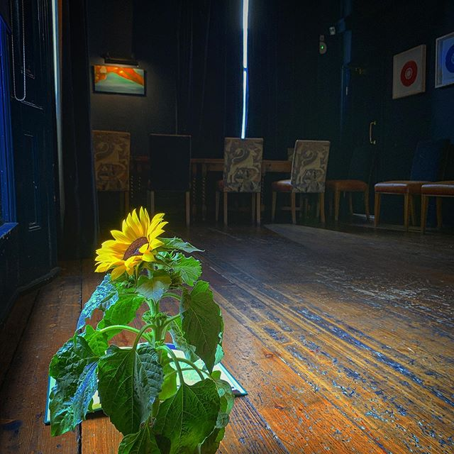 Rehearsals brought to you by the wonderful @theelginw11 who literally saved our 🥓 this weekend! (Flower, actor's own) . Thanks a mill, guys! . Really gorgeous space and pretty much the exact dimensions of our stage. . #medeaspeaks. . . Catch us at The Space on the Mile 12pm daily 19th - 24th. . See booking link in my bio. . . . . . . . . . . . . . . . #ActorsLife #Actor #Theatre #Film #TV #Gingersofinstagram #Redheadsofinstagram #Actorsofinstagram #instaactor #BritishActor #funnylady #redheadsdoitbetter #redheadsrule #redheadsunite #actingskills #redheads_of_insta #edinburghfestival #saturday #thespaceonthemile #edfringe19 #womenoffringe #actressesofinstagram #britishactors #feministtheatre #euripides #francarame #edinburghfringe2019 #icantkeepquiet
