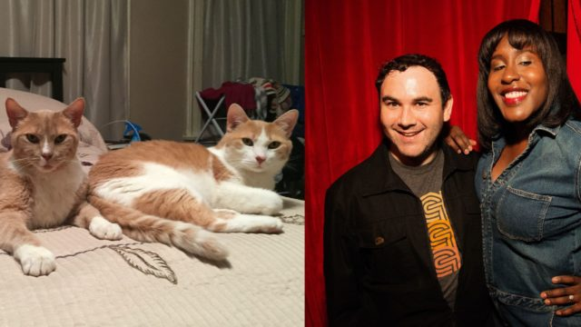naomi-andy-cats-FORSITE-640x360.jpg