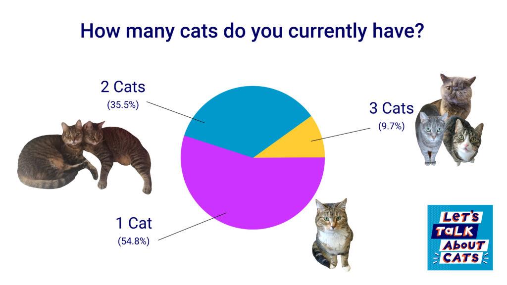 cat-chart-2.jpg