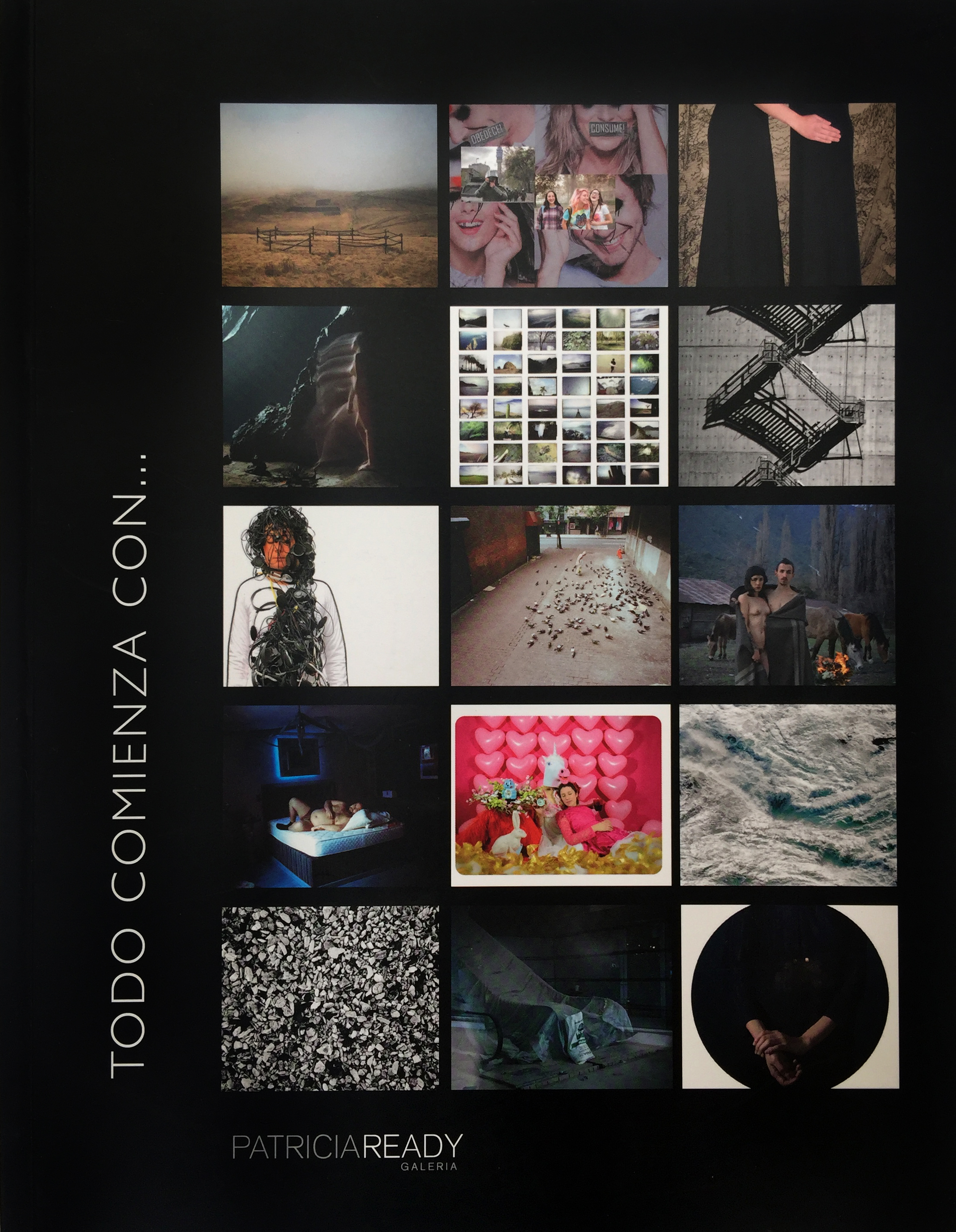 """2014: Catálogo """"Todo comienza con"""", galería Patricia Ready, Santiago, Chile."""