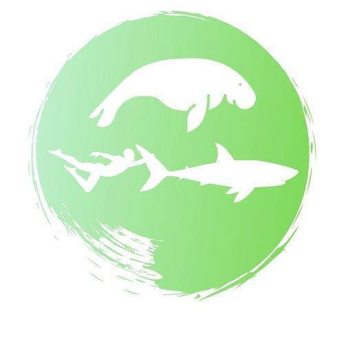 manatee+shark