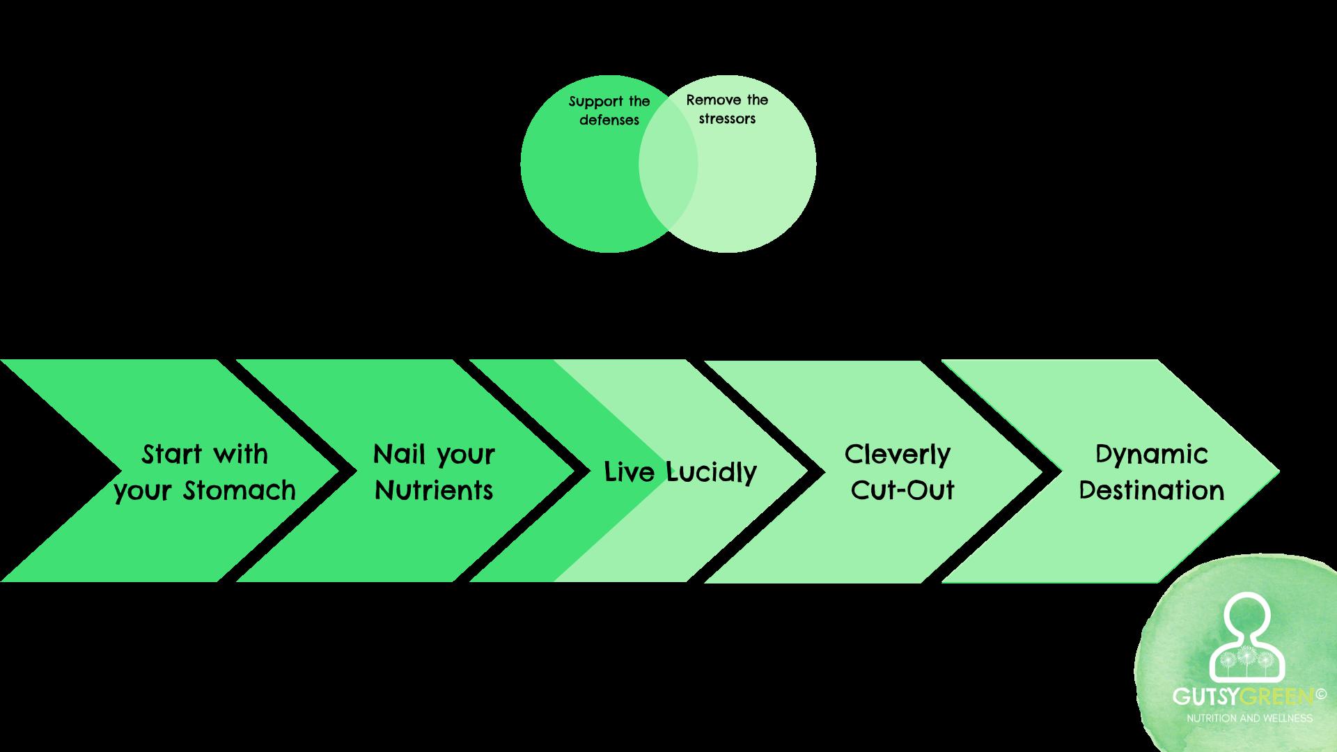 revive in five framework