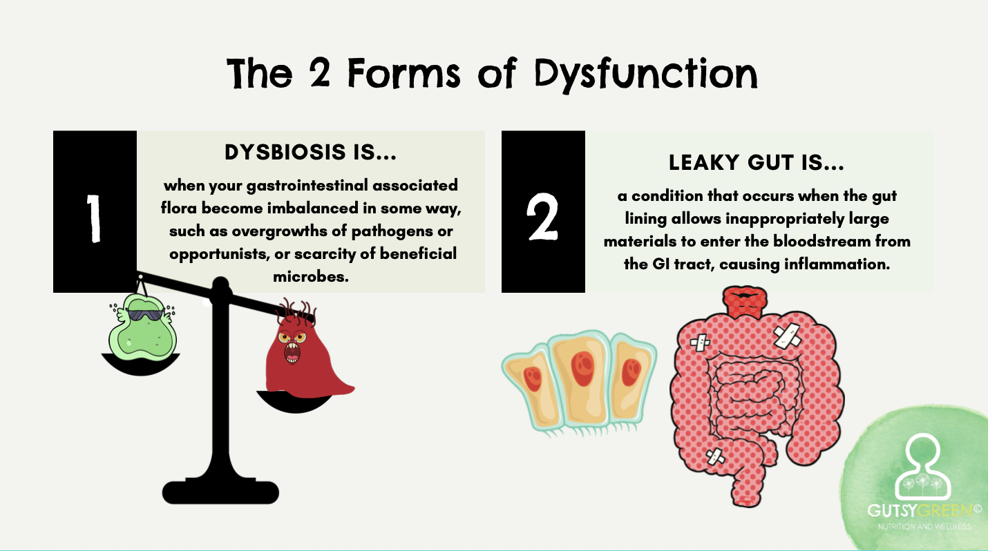 what are dysbiosis and leaky gut?