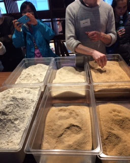 bread ed 2016 sifted extractions.jpg