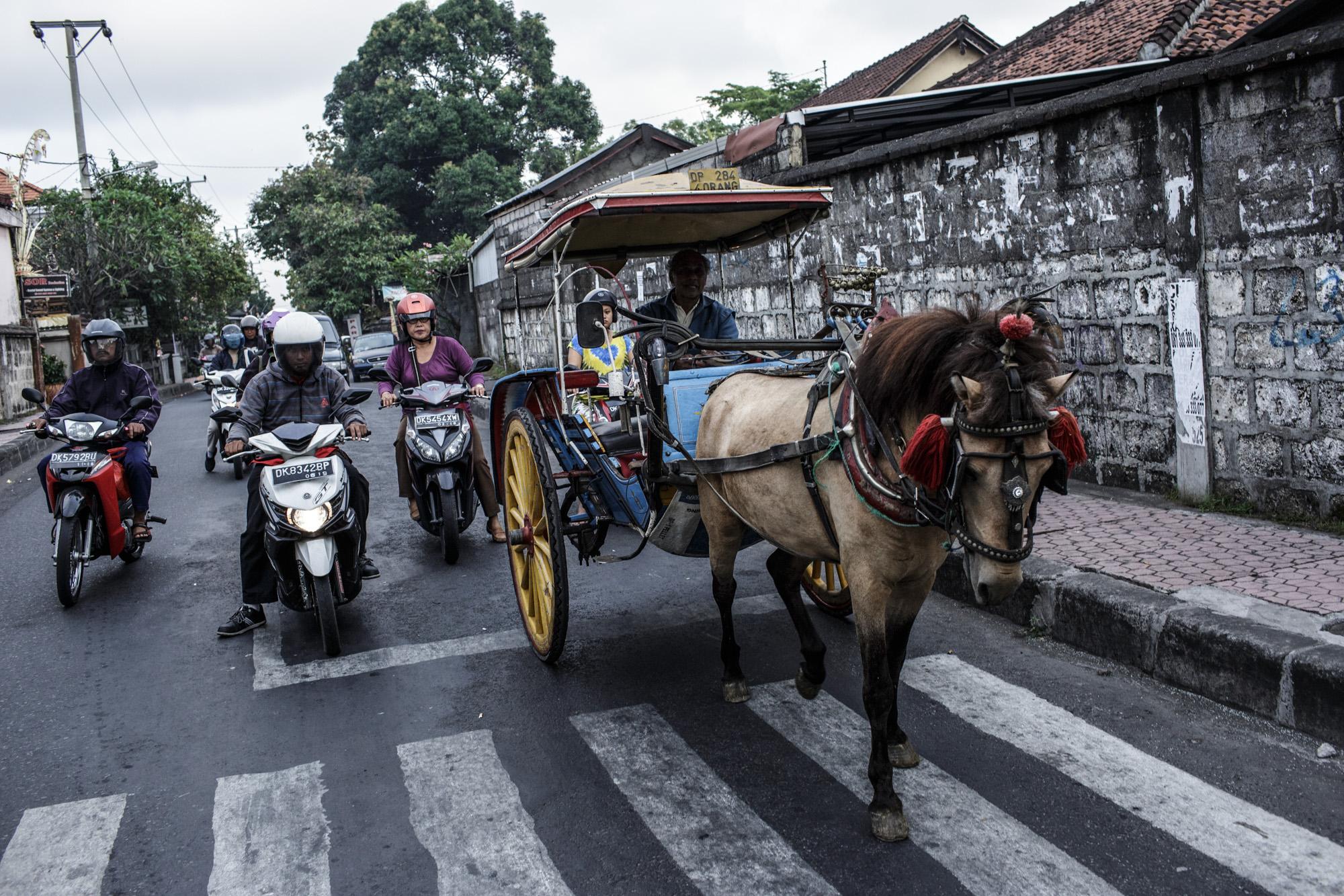 The Last Horsemen_AgungParameswara_16.jpg