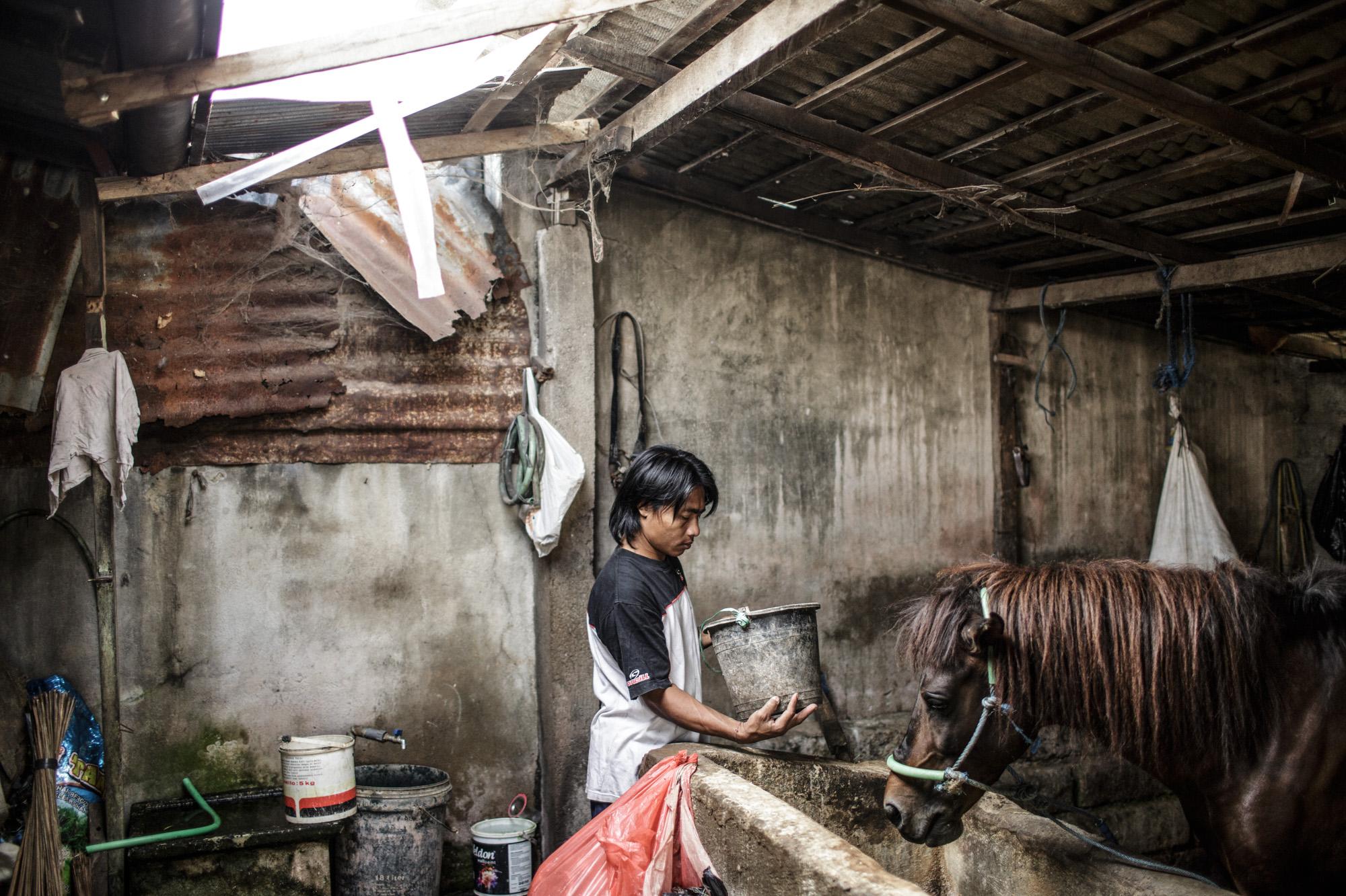 The Last Horsemen_AgungParameswara_20.jpg