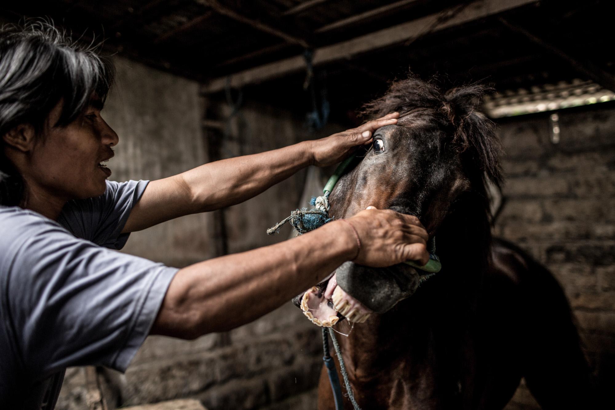 The Last Horsemen_AgungParameswara_39.jpg