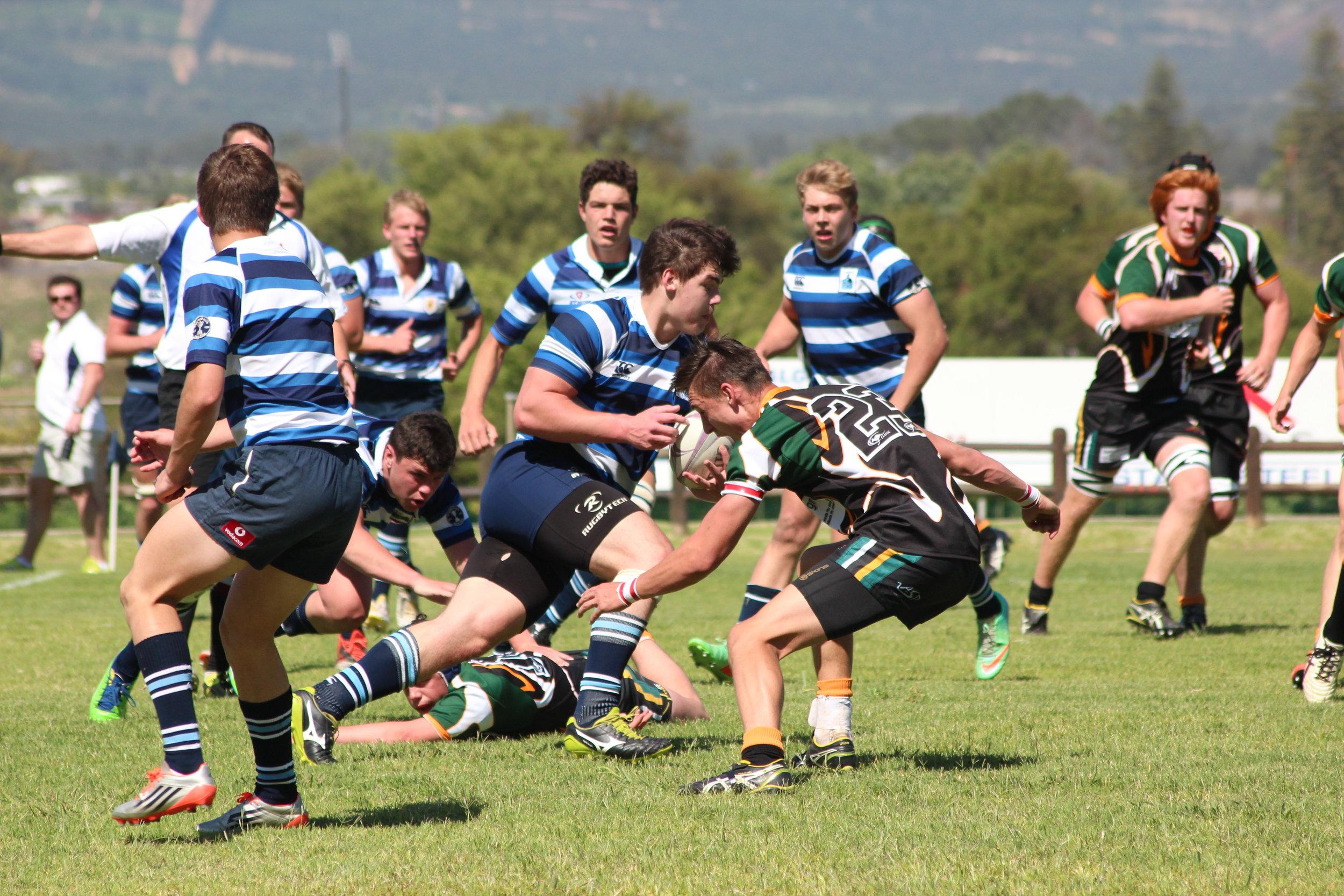 SA Rugby.jpg