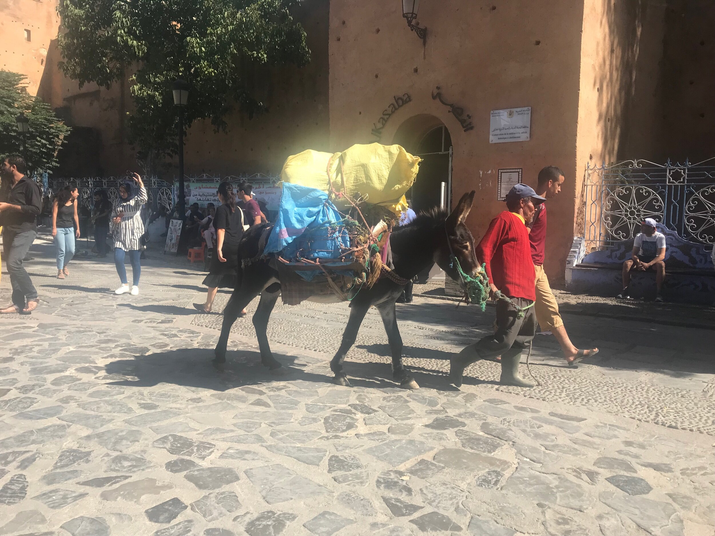 Donkeys are used to get some stock around the narrow streets.