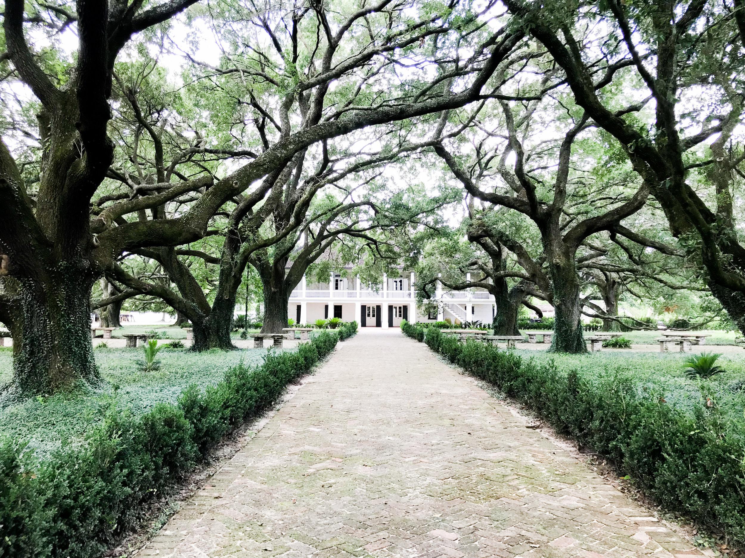 Whitney Plantation, New Orleans