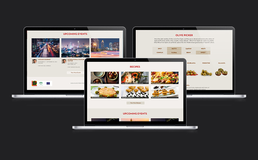 Olives from Spain Landing Page Design
