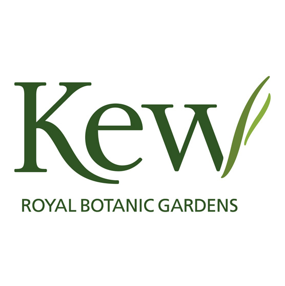 Disruptive Innovation at Royal Kew -