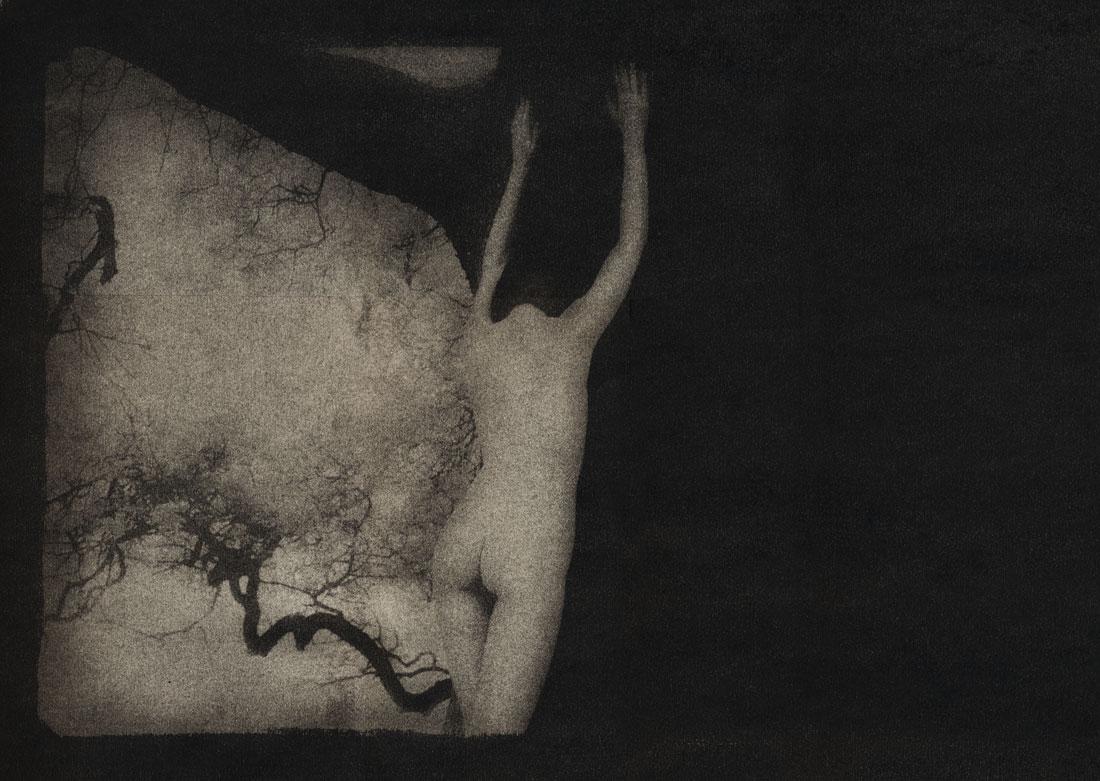 akttre-morten-haug-fotokunst-photography-norsk-kunst-norway-art.jpg