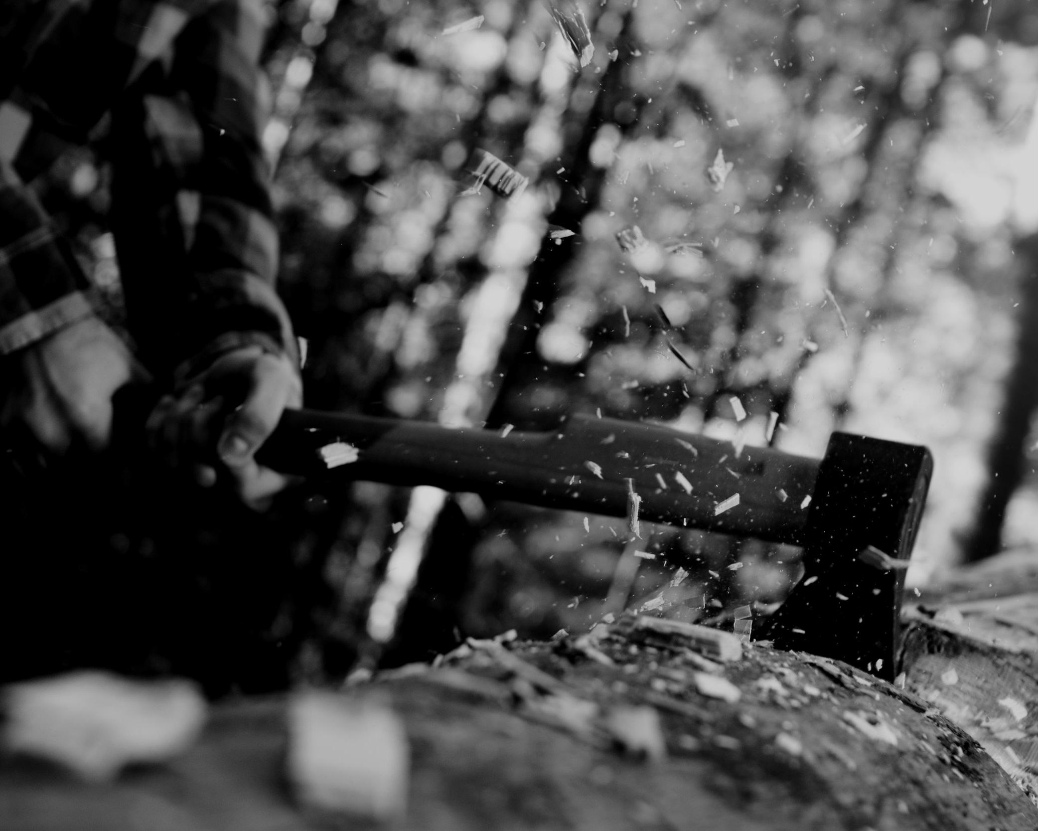 lumberjack-ConvertImage.jpg