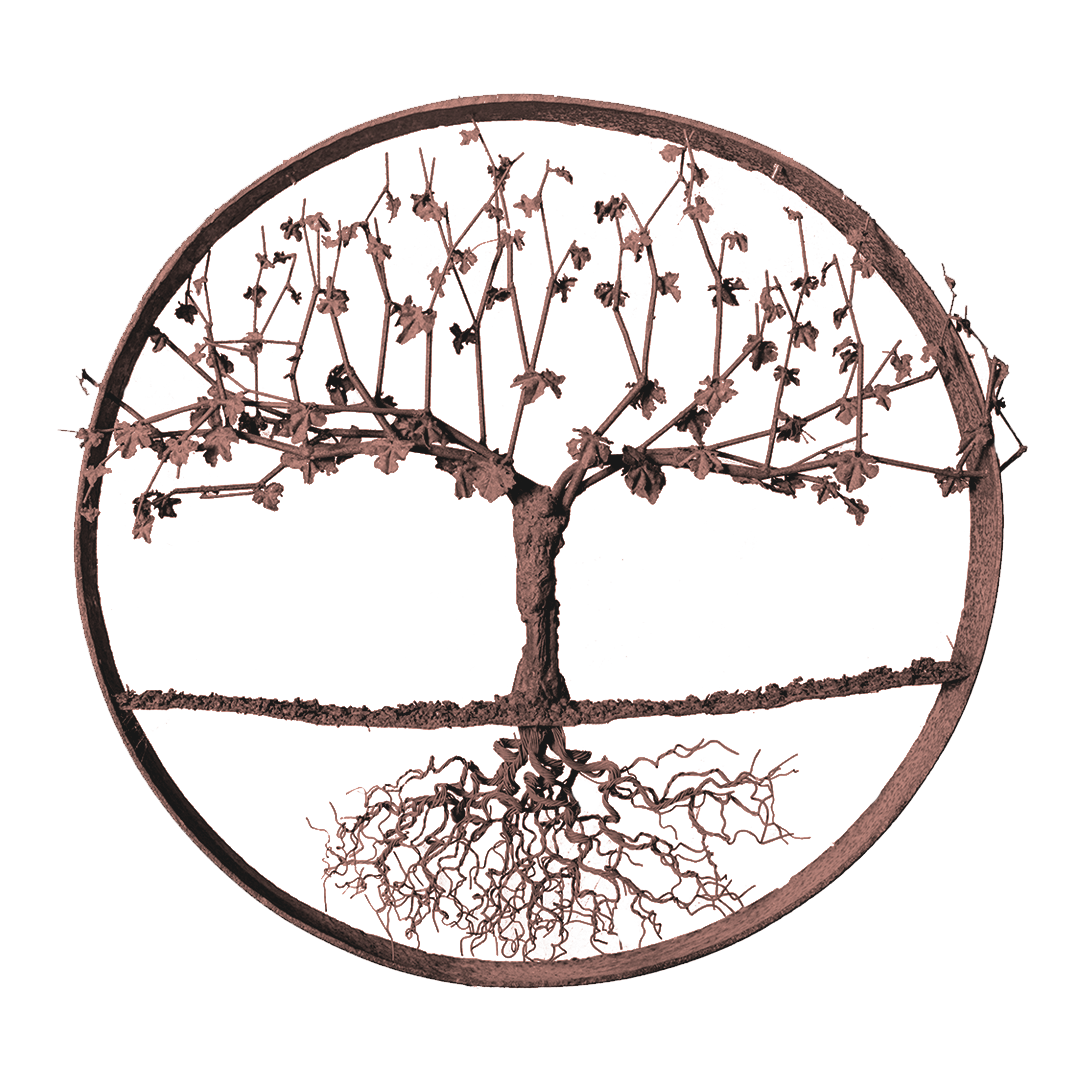 Vine Sculpture_7583-90%-Strong.png
