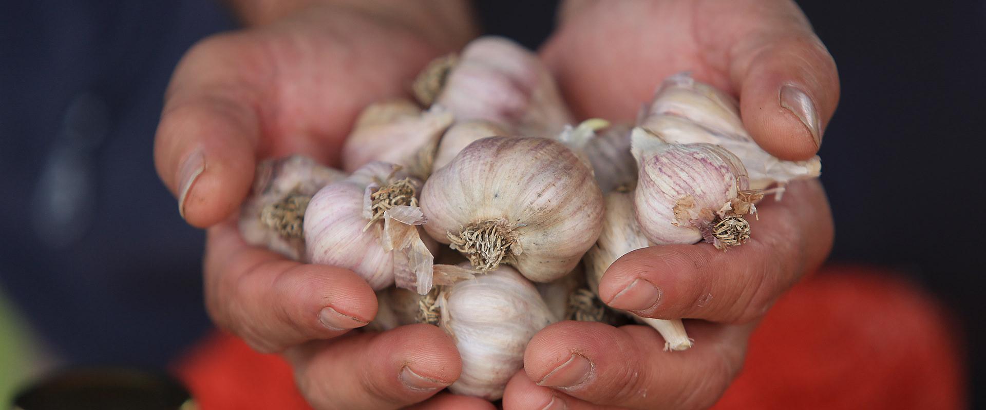 Visit   Armidale Farmers' Market    Find us