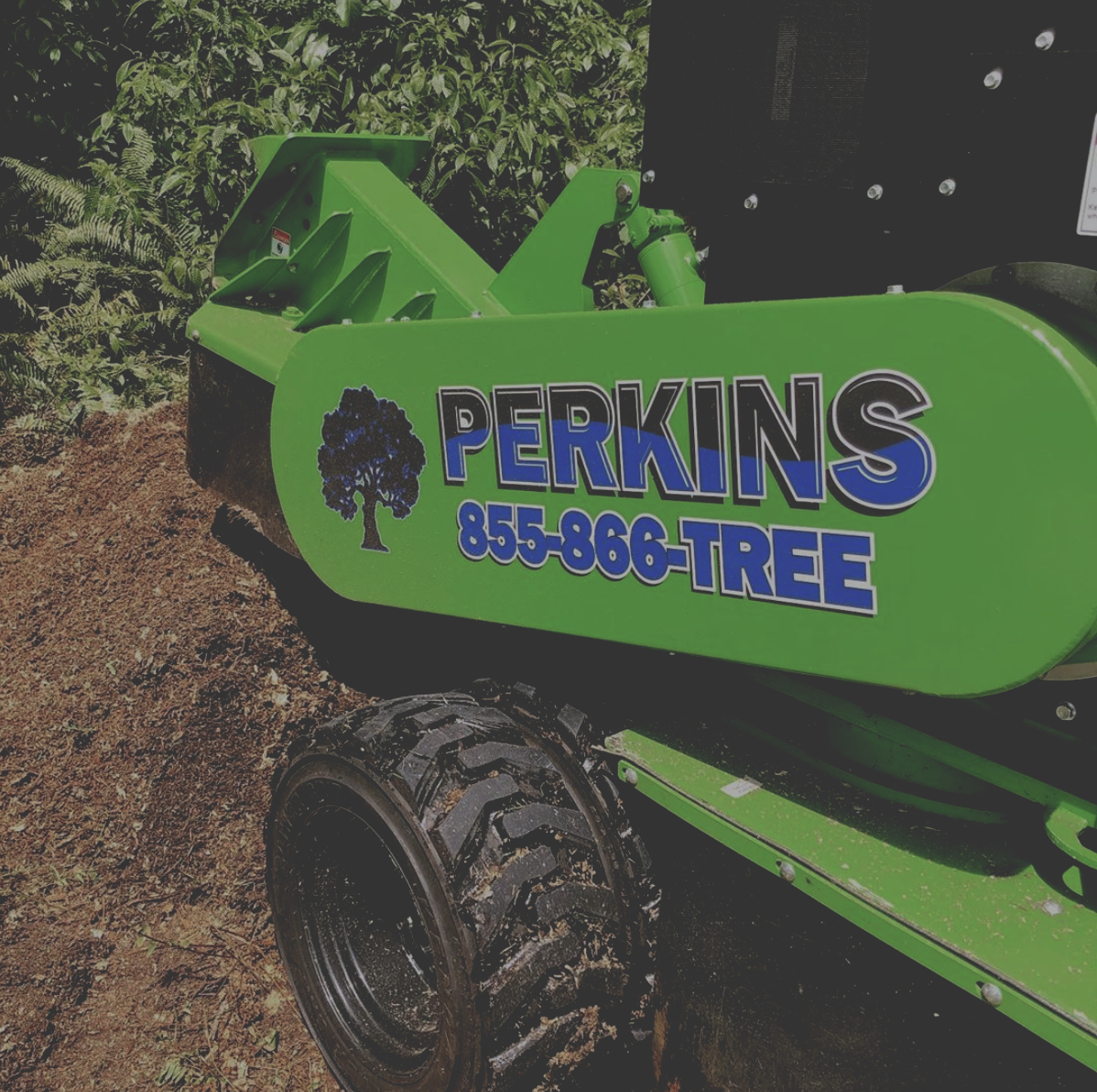 Stump Grinding - We utilize the most renowned equipment for our clean, top-quality stump grinding services.