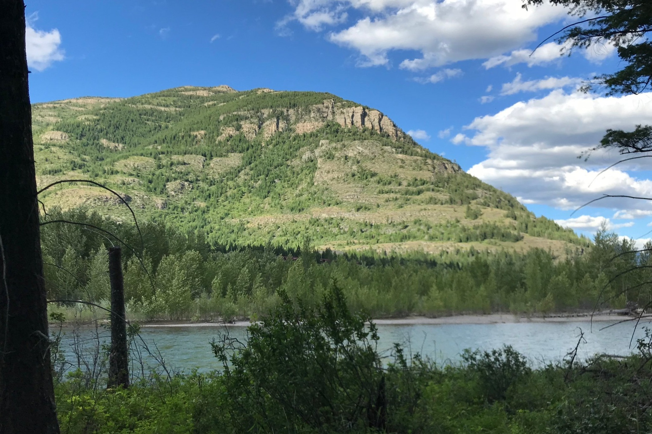 The columbia Falls River trail - A planned primitive trail following the Flathead River, connecting Columbia Falls to Badrock Canyon