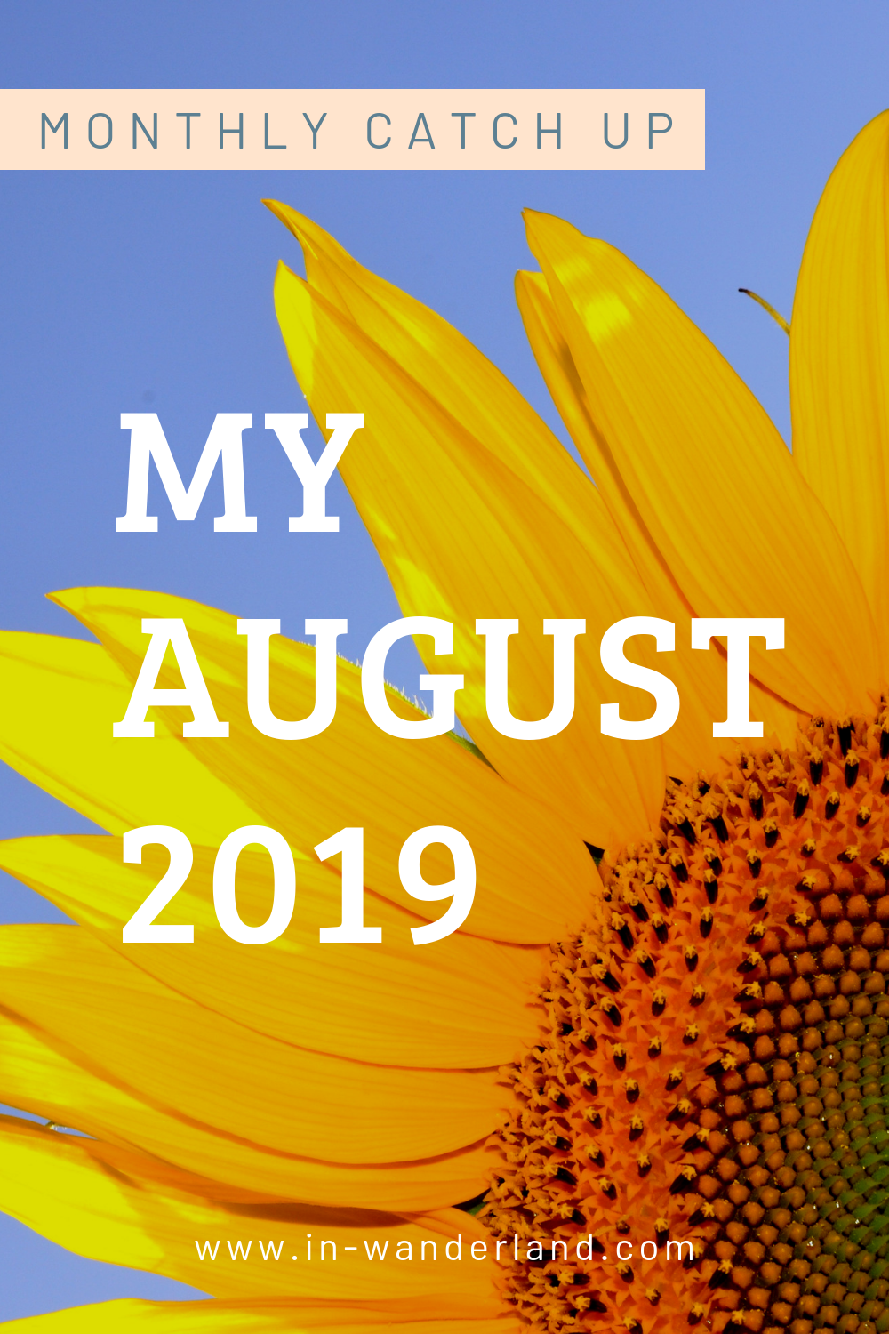 Monthly Catch Up: August