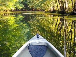 Boats and More -