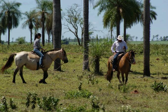 5188585e02ad9453759f5b961eec05db001384417724f_passeio_a_cavalo_-_horseback_riding_at_rio_da_prata_-_divulgacao.jpg.jpg