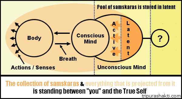 samskaras-in-between-you-and-self.png