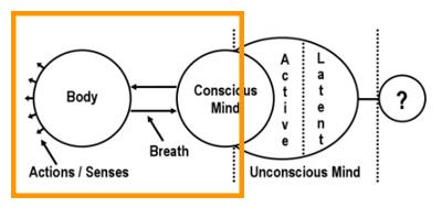 circle-chart-conscious-mind.jpg