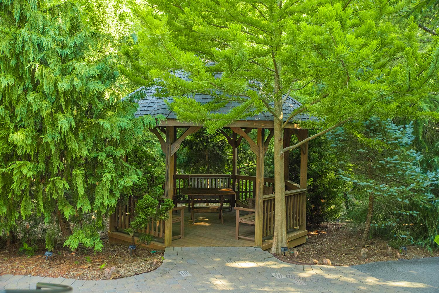 Gazebo - Tucked between perennial beds and the Conifer Collection near the garden entrance.