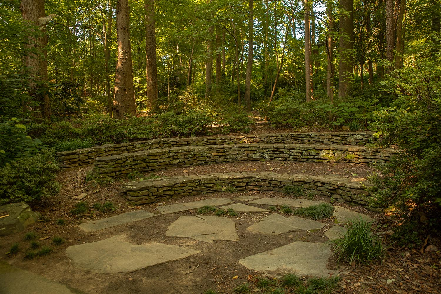 John A. Nevison Amphitheater - Surrounded by azaleas and river birches near the creek that feeds into the lower pond.