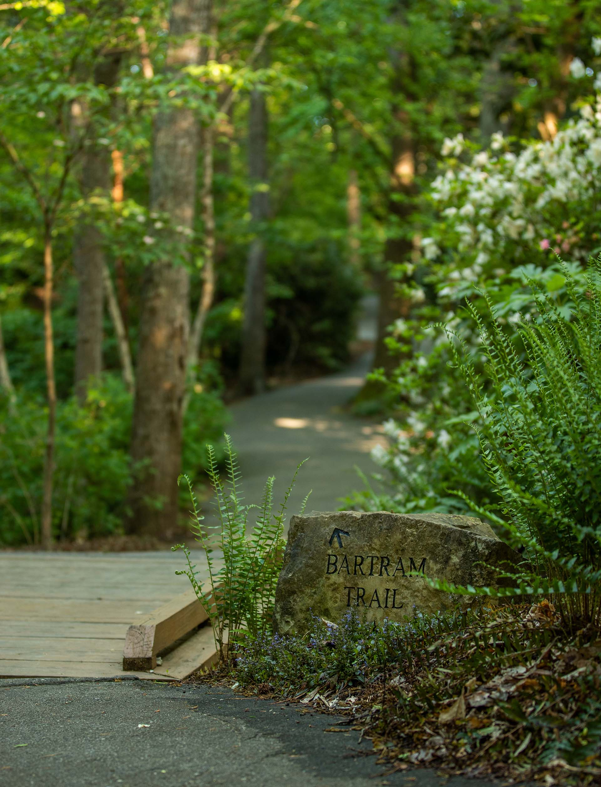 Bartram Trail Marker 2.jpg
