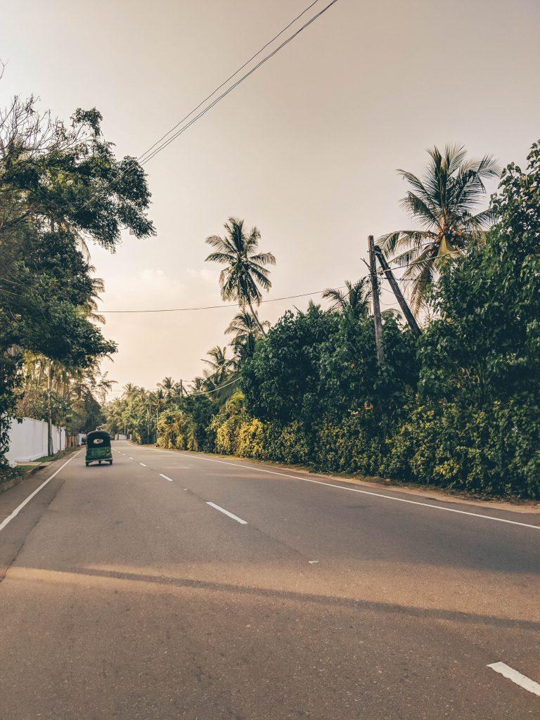 Sri-Lanka-65-768x1024.jpg