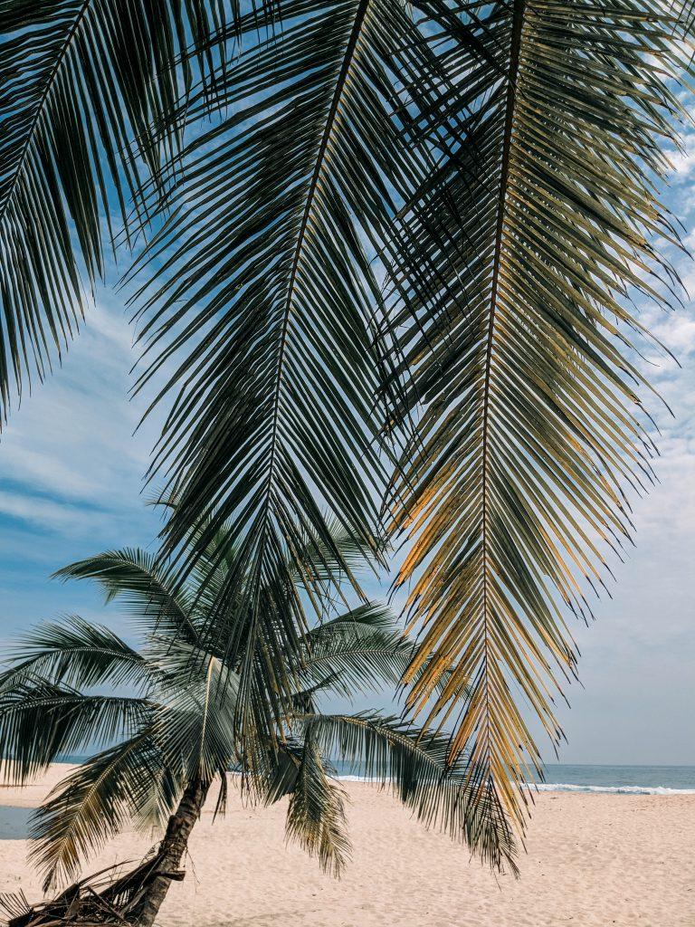 Sri-Lanka-22-768x1024.jpg