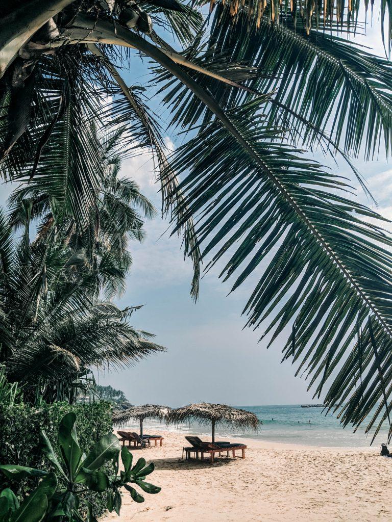 Sri-Lanka-27-768x1024.jpg