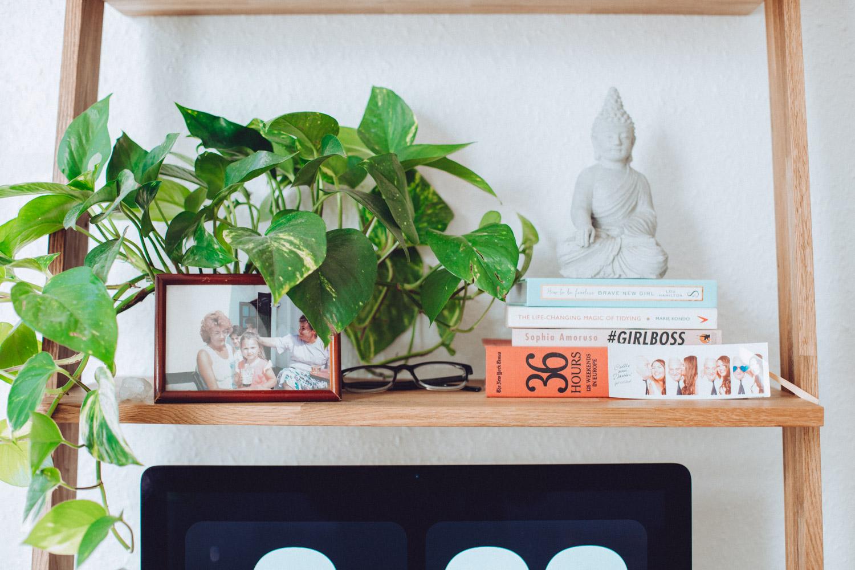 hanging house plants for ladder desk