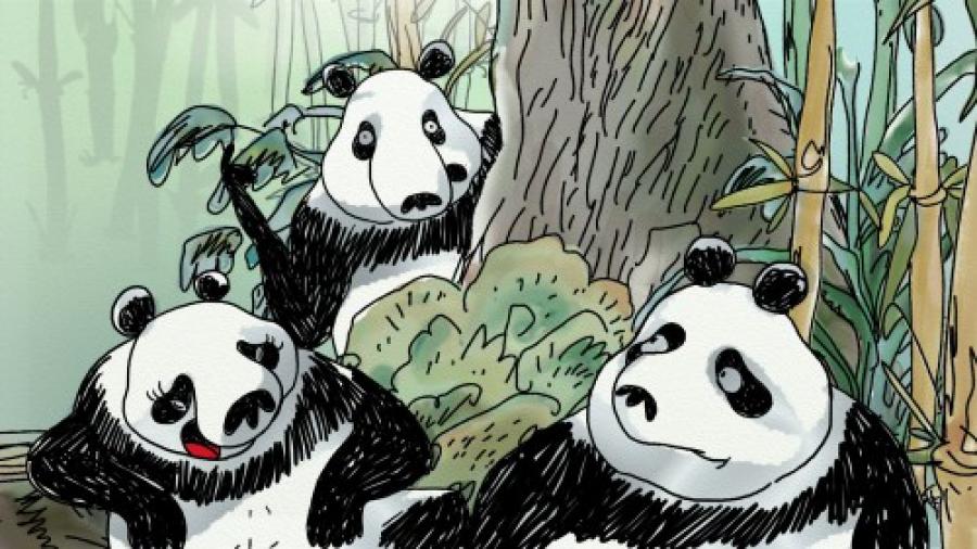 PandasInTheMist_01.jpg