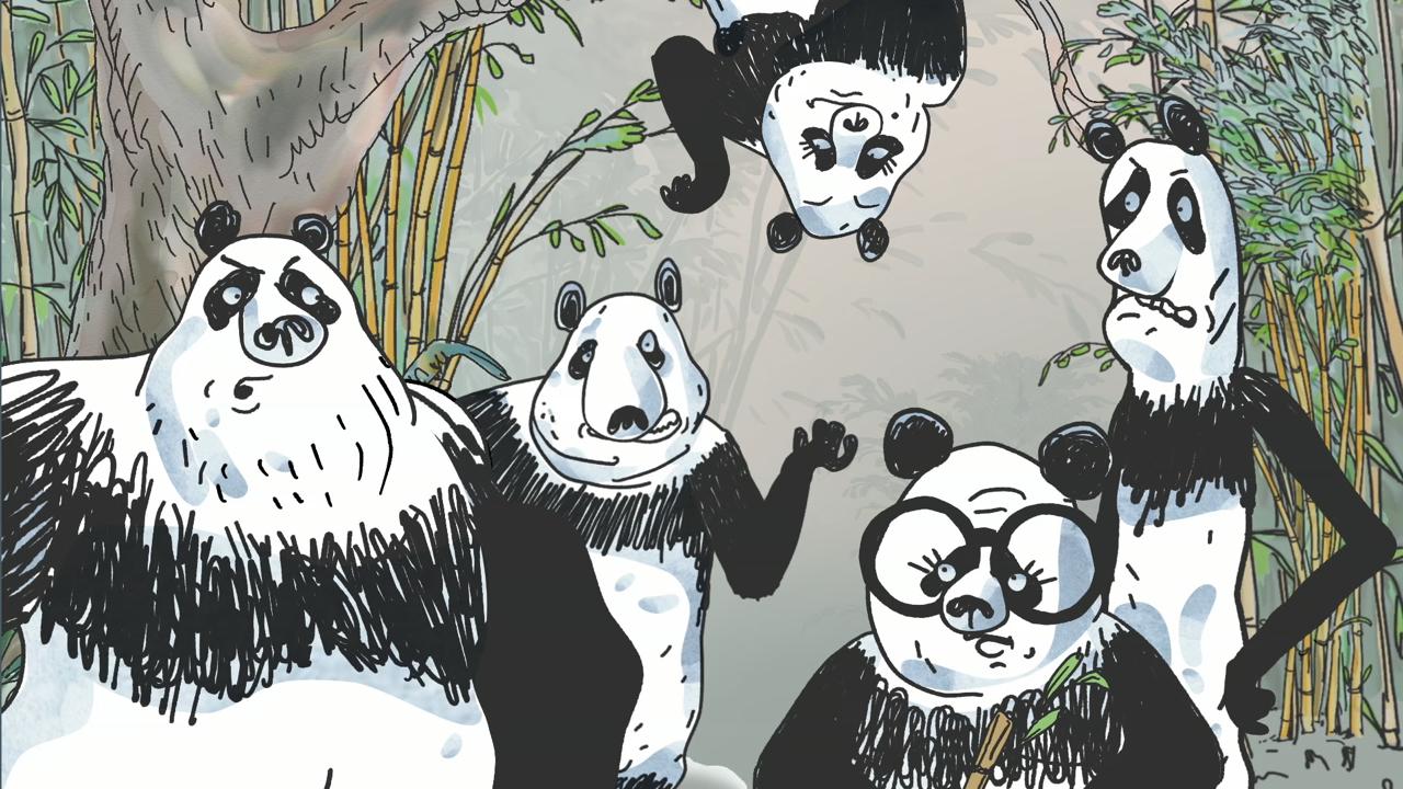 PandasInTheMist_04.png
