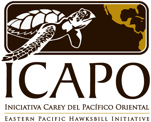 ICAPO_500wide_color.png