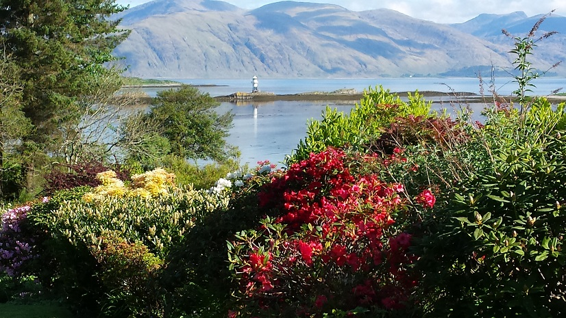 Airds rhododendrons & lighthouse view.jpg