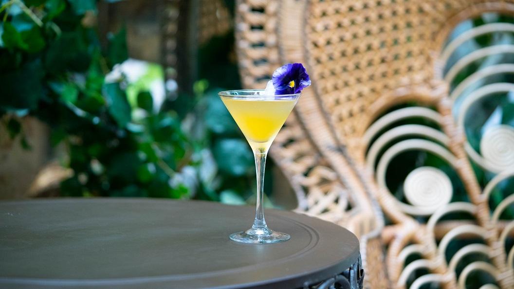 FRESH AS A DAISY : Martini Extra Dry, Bénédictine and Lime Juice