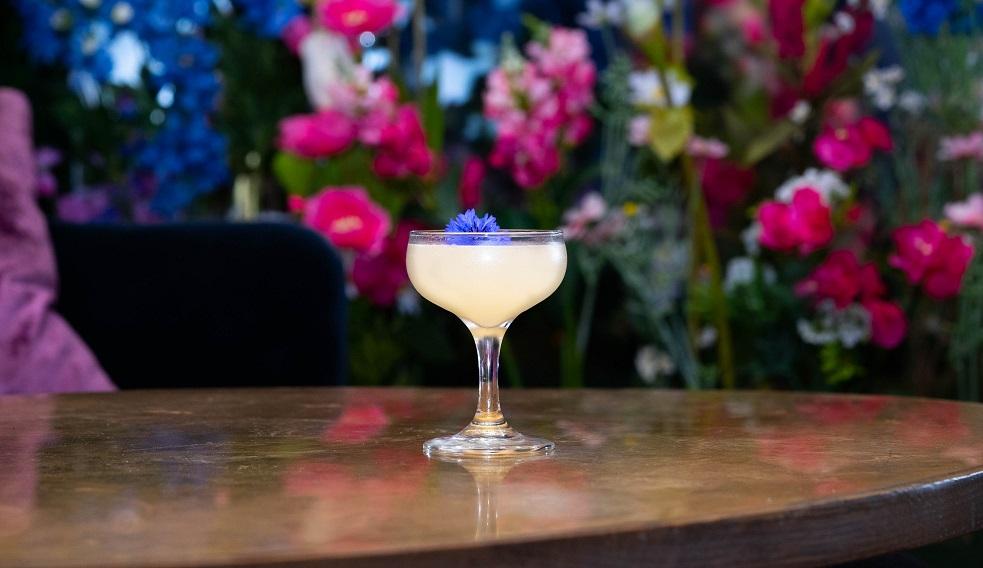 HUMDINGER : Bombay Sapphire Gin, St-Germain Liqueur, Lemon Juice and Honey Syrup