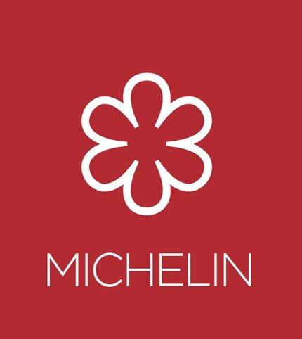 michelin-tab.jpg