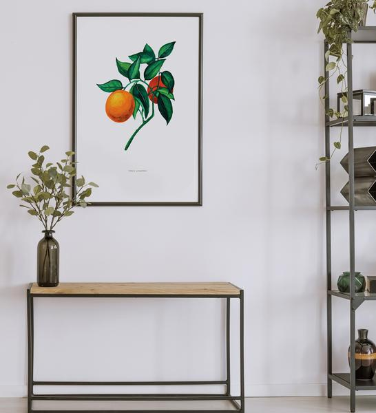 Feeling orangey? Go for this refreshing      vintage botanical      poster!