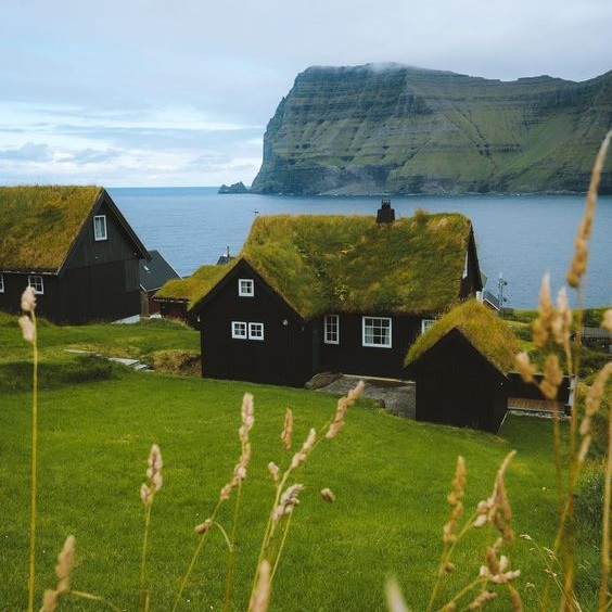 Sustainability article. Image of Danish coastal view with houses