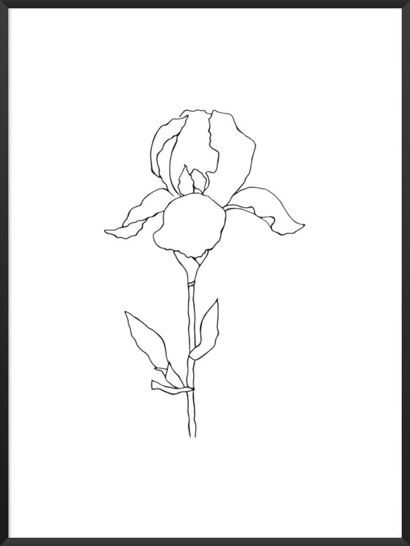 Monochrome Art. Image of Iris Poster.jpg