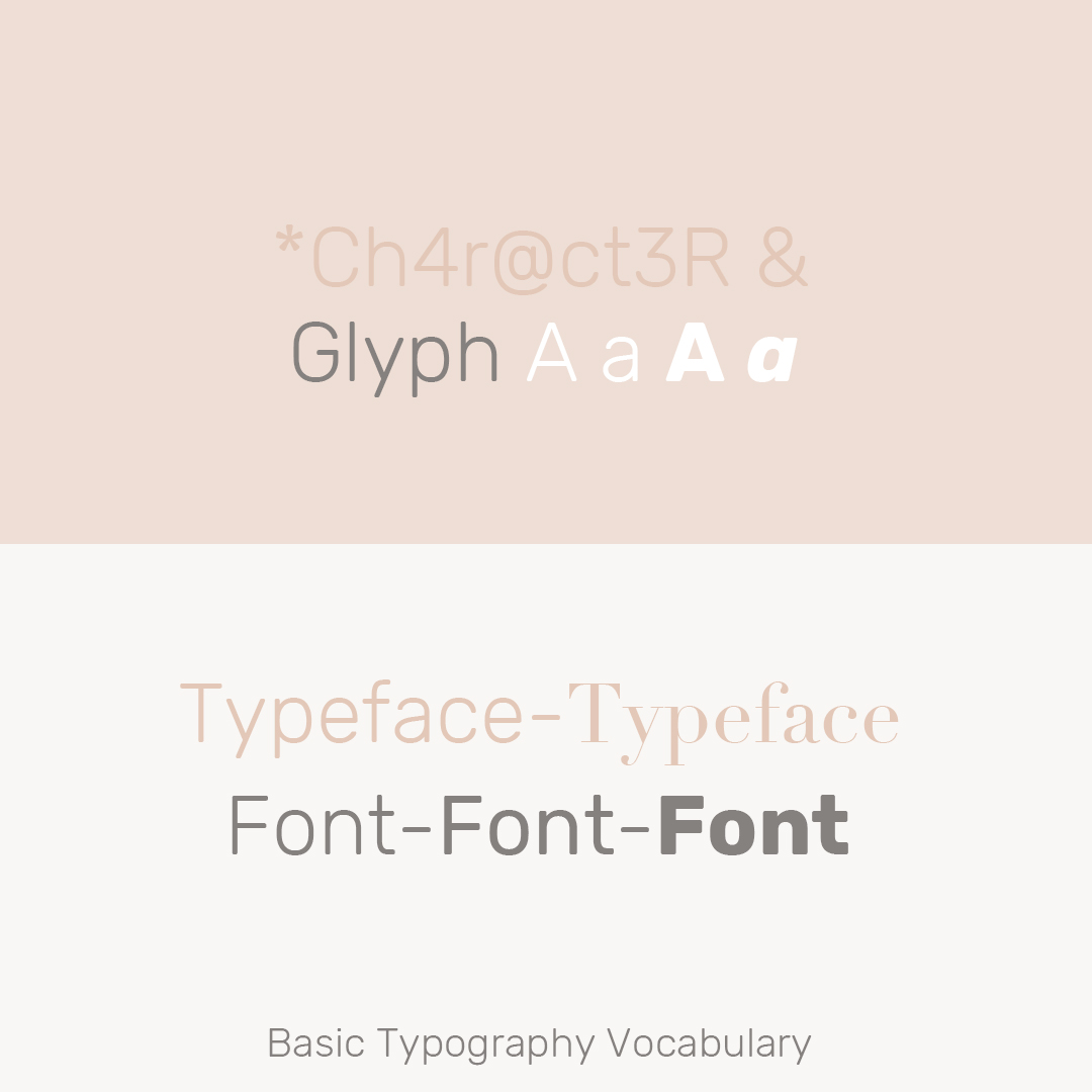 Typography Article. Image of Basic Typography Vocabulary